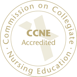 Commission on collegiate nursing education accelerated nursing program